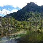 Dakesawa Marsh